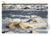 Polar Bear Mother And Cub Grooming Carry-all Pouch