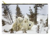 Polar Bear Ursus Maritimus Mother And Cubs Carry-all Pouch