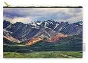 Polychrome Carry-all Pouch by Heather Applegate