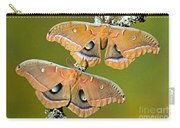 Polyphemus Moths Carry-all Pouch