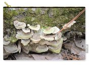 Polypore Abstract Carry-all Pouch