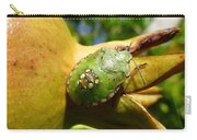Pomegranate Bug Jewel Case Carry-all Pouch