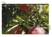 Pomegranate Tree  Carry-all Pouch