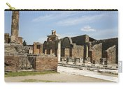 Pompeii 3 Carry-all Pouch