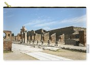 Pompeii 5 Carry-all Pouch