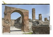 Pompeii 6 Carry-all Pouch