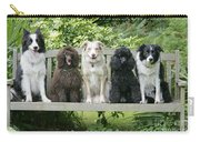 Poodles And Other Dogs On A Bench Carry-all Pouch