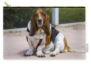 Pool Side Basset Carry-all Pouch