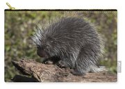 Porcupine Looking For Food Carry-all Pouch