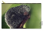 Porcupine Slumber Carry-all Pouch