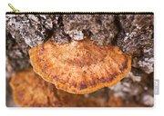 Poria Shelf Fungi 1 Carry-all Pouch