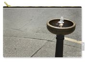 Portland Drinking Water Fountain Carry-all Pouch