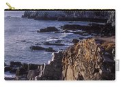 Portland Headlight Maine Carry-all Pouch