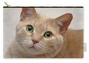 Portrait - Orange Tabby Cat Carry-all Pouch