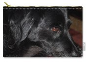 Portrait Of A Border Collie Carry-all Pouch