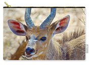 Portrait Of A Bushbuck In Kruger National Park-south Africa  Carry-all Pouch
