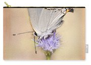 Portrait Of A Gray Hairstreak Carry-all Pouch