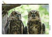 Portrait Of A Pair Of Owls Carry-all Pouch