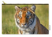 Portrait Of A Tiger Carry-all Pouch