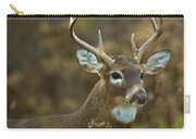 Portrait Of A White Tailed Buck Carry-all Pouch
