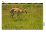Portrait Of A Young Pronghorn Carry-all Pouch