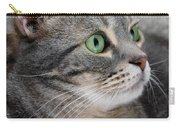 Portrait Of An Ameriican Shorthair Cat Carry-all Pouch