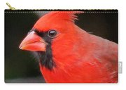 Portrait Of Male Cardinal Carry-all Pouch