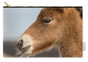 Portrait Of Newborn Foal Carry-all Pouch
