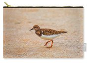 Portrait Of The Ruddy Turnstone Carry-all Pouch
