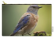 Posing Bluebird Carry-all Pouch