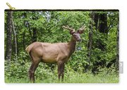 Posing Carry-all Pouch by Carolyn Marshall