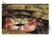 Posing Crab Carry-all Pouch