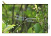 Posing Dragonfly Carry-all Pouch