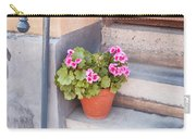 Potted Plant Front Of House Carry-all Pouch