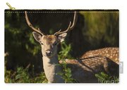 Powderham Deer  Carry-all Pouch