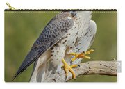 Prairie Falcon Carry-all Pouch