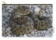 Prairie Rattlesnake South Dakota Badlands Carry-all Pouch