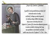Prayer To St. Gerard For Motherhood Carry-all Pouch