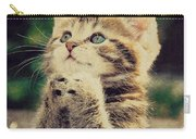 Praying Cat Carry-all Pouch