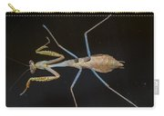 Praying Mantis 4 Carry-all Pouch