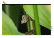 Praying Mantis Peekaboo Carry-all Pouch