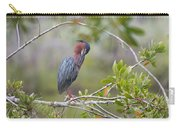 Preening Greenie Carry-all Pouch