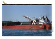 Presque Isle Ship Carry-all Pouch