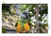 Pretty Bird Carry-all Pouch