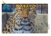 Pretty Kitty Carry-all Pouch