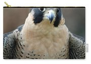 Pretty Peregrine Carry-all Pouch
