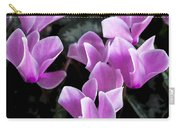 Pretty Persicum Carry-all Pouch