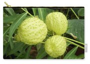Prickly Balloon Plant Carry-all Pouch