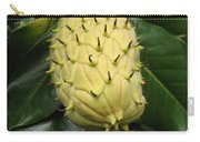 Prickly Fruit Carry-all Pouch