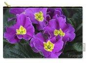 Primrose Purple Carry-all Pouch